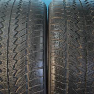 nokian wp no 2953019 pair 5